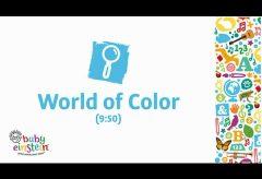 Baby Einstein: el mundo de los Colores