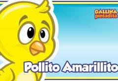 Pollito Amarillito – Gallina Pintadita