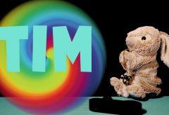 ¡Adivina y aprende los colores con Tim!