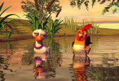 El Gallo y la Pata – Canciones de la Granja de Zenón